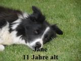 a_jane_009.jpg